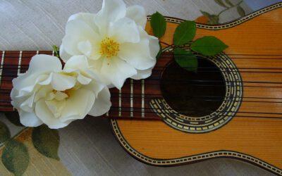Das Leben ist wie eine Melodie